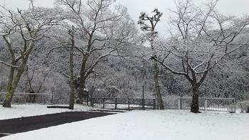 1H31  雪景色.jpg